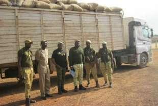 Fuite de la noix de cajou aux frontières ivoiriennes : les pays voisins en profitent …